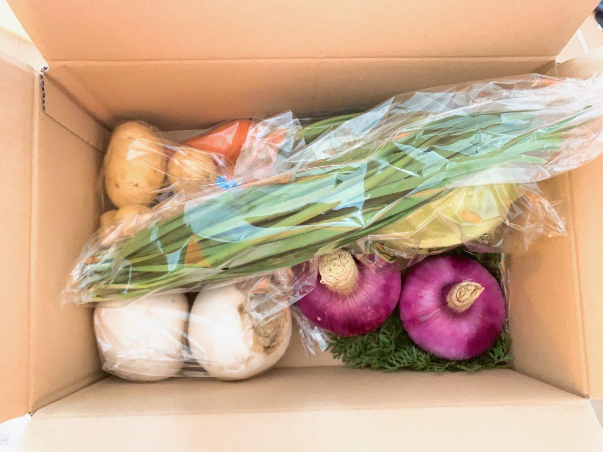 食べチョクで届いた野菜